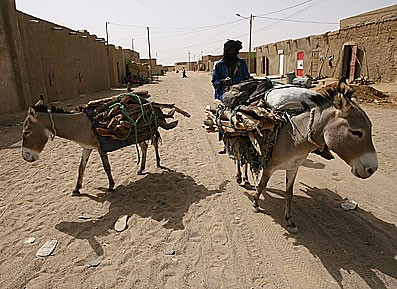 Un Touareg se promenant dans les rues de Kidal avec ses ânes.  Photo AFP