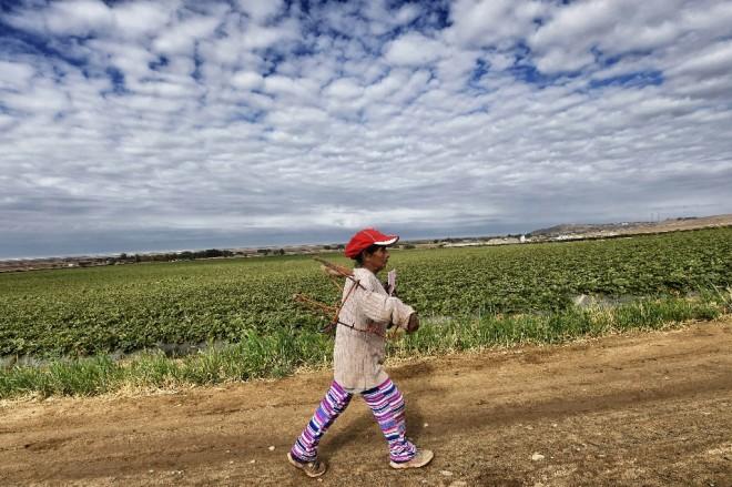 mexique-usa-travail-agriculture-commerce-1-660x439