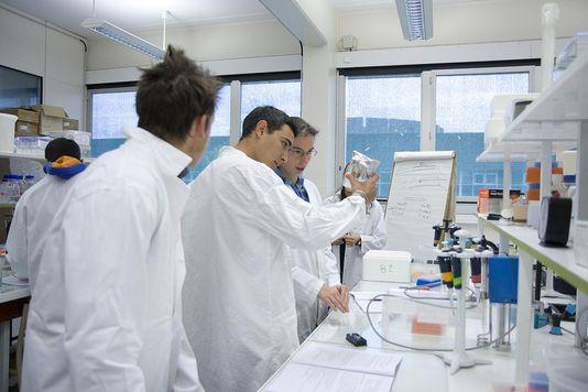 4651094_6_9b1c_etudiants-dans-un-laboratoire-de-recherche_44b05b443f6221fae21262c80b2b8b34