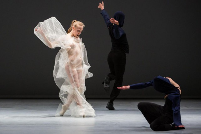 L'histoire de la danse contemporaine et son renouveau.  Photo dr