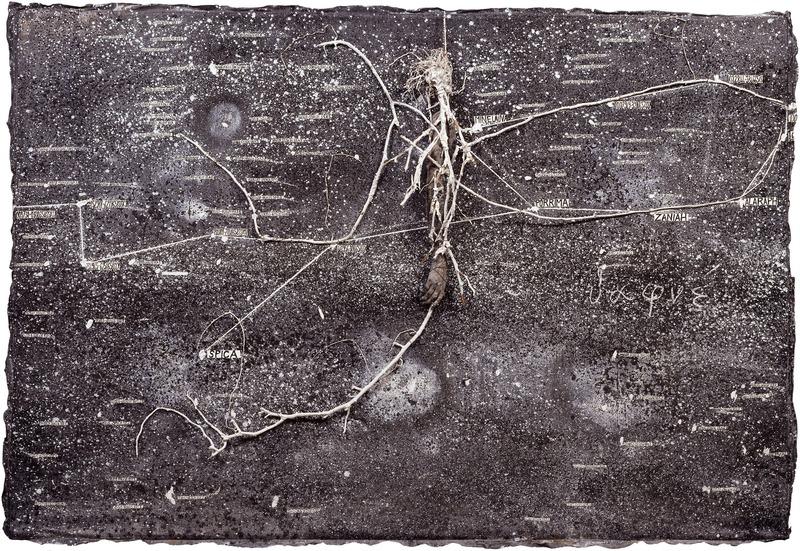 Anselm Kiefer. La Vie secrète des plantes