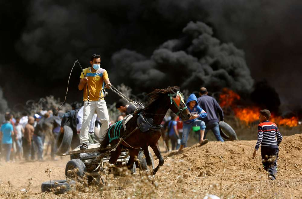 TOPSHOT - A Palestinian drives a horse-drawn cart during